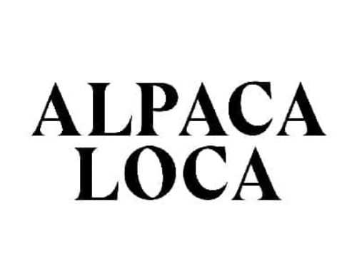 Online Marketing Alpaca Loca